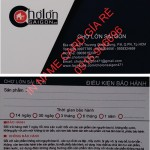 in-name-card-hcm
