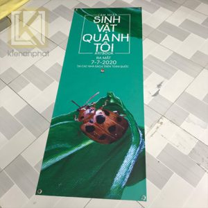 in standee banner dung chuan